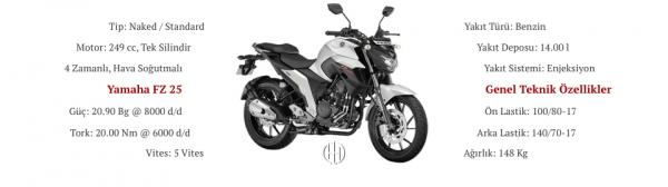 Yamaha FZ 25 (2017 - 2019) - Motodeks