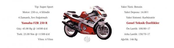 Yamaha FZR 250 R (1989 - 1994) - Motodeks
