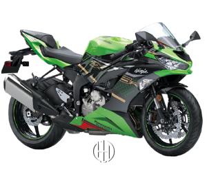 Kawasaki Ninja ZX-6R (2019 - XXXX) - Motodeks