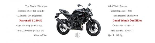 Kawasaki Z 250 SL (2015 - XXXX) - Motodeks