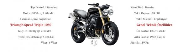 Triumph Speed Triple 1050 (2005 - 2010) - Motodeks